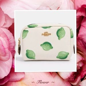 NWT Coach Mini Boxy Cosmetic Case With Lime Print